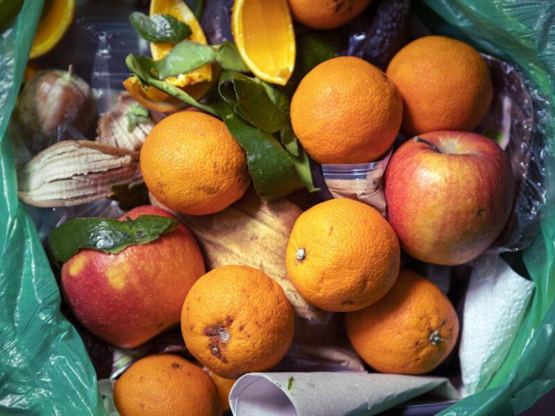 Lebensmittel Abfall